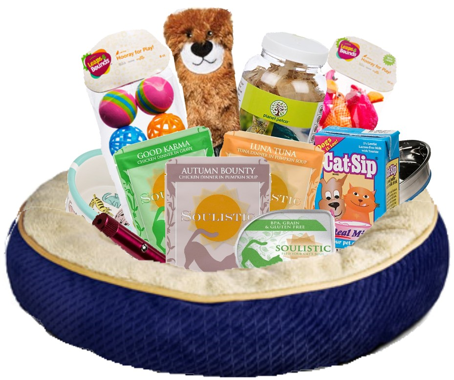 All For Spoiling Kitty Cat Gift Basket Small